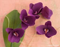 Paper Orchid Flower Diy Crepe Paper Orchid