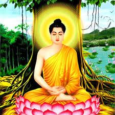 Pháp Âm Phật Học