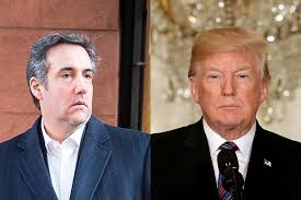 Image result for michael cohen corruption images
