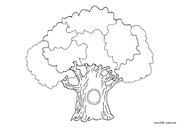 Small Picture 98 ideas Tree Trunk Coloring Page on kankanwzcom