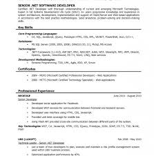 Amazing Vba Developer Resume Pictures - Simple resume Office .