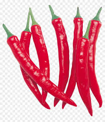 chili pepper png.  Png Red Chilli Pepper Row  Png On Chili E