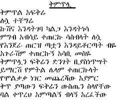 amharic funny jokes