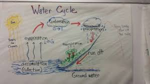 Water Cycle Fifth Grade Science Anchor Chart Good For Staar