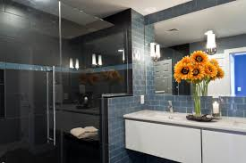 Baltimore Inner Harbor High Rise Living Owings Brothers Contracting - Condo bathroom remodel