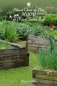 best wood for raised garden beds. Best Wood To Use For Raised Garden Beds Empress Of Dirt