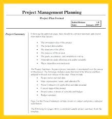 Transition Plan Template Project Schedule Execution Employee