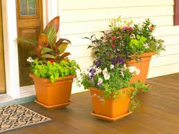 Potted Plants on Front Porch