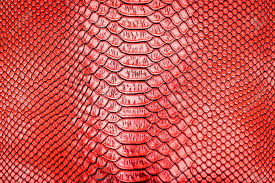 Snake Skin Pattern Awesome Red Snake Skin Pattern Texture Background Stock Photo Picture And