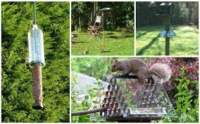 they re cute they re fuzzy they re fun to watch and they love wreaking havoc on your bird feeders it seems that squirrels love nothing more than to find