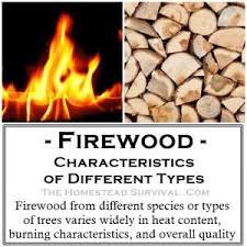Wood Characteristics Chart Firewoods 300x300 1 Firewood Characteristics Huge Chart To