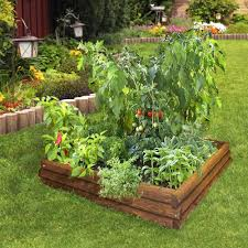 Small Picture Beautiful raised bed vegetable garden