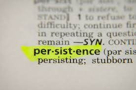 Image result for persistence