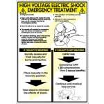 Electric Shock Treatment Chart In Hindi Pdf Electric Shock Treatment Poster In Hindi Safetyshop