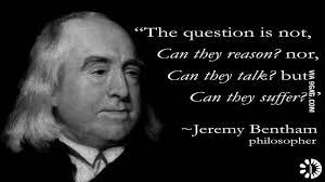You can say any foolish thing to a dog, and the dog will give you a look that says, 'my god, you're right! Jeremy Bentham On Animal Rights Vegetarian Quotes Quotes By Famous People Sick Quotes