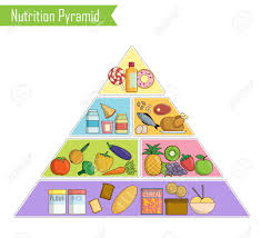 Nutrition Food Chart Isolated Infographic Chart Illustration Of A Healthy Balanced
