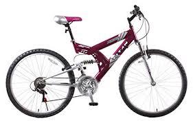 an punisher 21 sd dual suspension all terrain mountain bike purple 18
