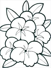 Spring Flowers Coloring Pages Spring Flowers To Color Coloring
