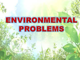 sample essay on environmental issues movie review how to write  sample essay balaji d k ias rank 36 cse 2014