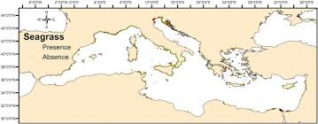 Seagrass And Hydrographic Data For The Mediterranean Sea