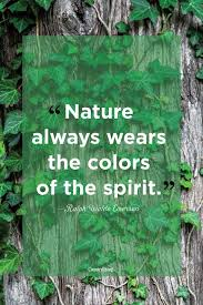 40 Best Nature Quotes Inspirational Sayings About Nature Interesting Emerson Nature Quotes