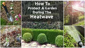 garden shade cloth. How To Protect A Garden During The Heatwave Shade Cloth L