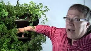 Vertical Herb Garden In Your Kitchen Aria Vertical Gardening Pro Kitchen Herb System Youtube