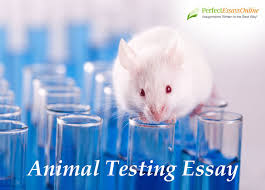 animal testing essay made easier our advice animal testing has recently become one of the most debatable topics in academic writing and in media as more people around the world want to promote
