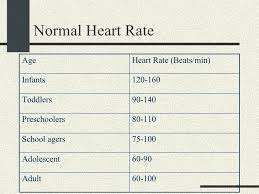 Normal Pulse Rate For An Adults
