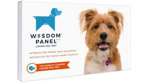 The Best Dog Dna Testing Kits For 2019 Pcmag Com