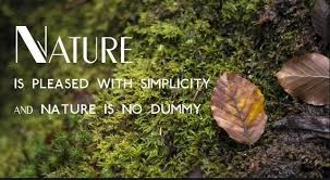 Nature Status And Quotes Best Nature Status New Status N Quotes Impressive Best Nature Quotes