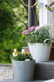 Fall Container Wow In 3 Easy Steps  Fall Containers Plants And Container Garden Design Plans
