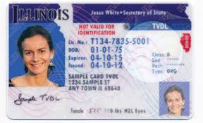 License In Can For Driver's – Cbs Chicago Illinois Undocumented Apply