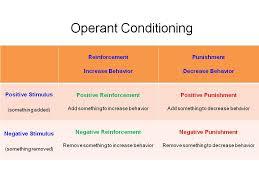 operant conditioning essay