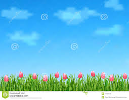 green grass blue sky flowers. Background With Blue Sky, Clouds, Green Grass End Pink Flowers Tulips. Page, Pamphlet. Sky -