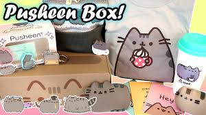 Pusheen Cat Subscription Box - Packed with Official Kawaii Merch!! - YouTube