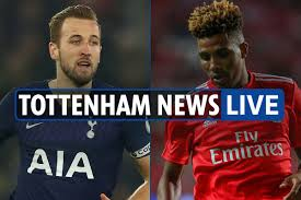 7am Tottenham transfer news LIVE: Gedson Fernandes completes ...