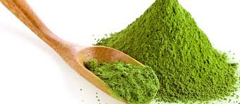 the best vegan protein powders