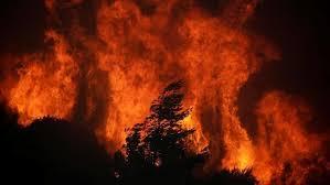 Imagini pentru incendii