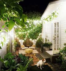 Narrow Backyard Ideas Set