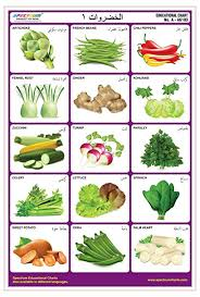 Spectrum Arabic Language Vegetables 1 Pre Primary Kids Learning Laminated Wall Chart