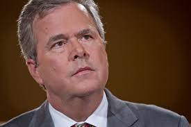 Image result for jeb bush image