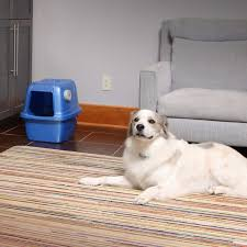 best area rugs for pets stylish tasty pet odor remover design