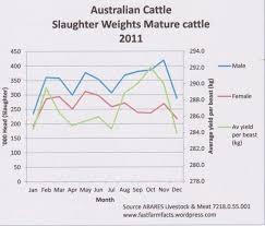 Cattle Dog Weight Chart Australian Cattle Dog Weight Chart