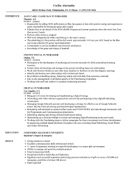Non Profit Resume Fundraiser Resume Samples Velvet Jobs 37