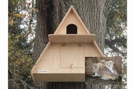barn owl bird house plans inspirational barn owl box with wireless