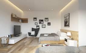 Apartment Bedroom Living Room Interior Design Ideas