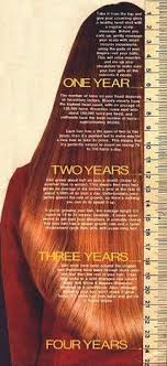 Hair Growth Length Chart Hair Length Chart A Hair Length Chart Is A Great Way To