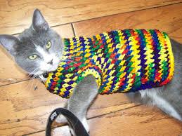 Cat Sweater Knitting Pattern