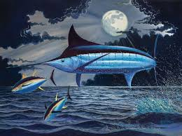 How Moon Phase Affects Fishing Success Sport Fishing Magazine